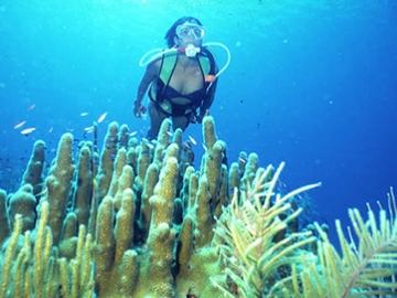 Excursiones en Cuba - Seatour