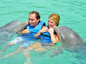 Tours in Cuba - Special Swimming with dolphins