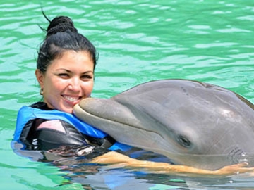 Tours in Cuba - Swimming with dolphins NEW!